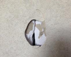 札幌市清田区)壁穴