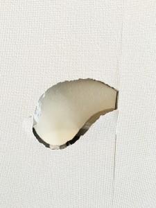 リビング壁穴 札幌市中央区