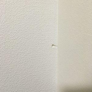 荷物が倒れて壁穴